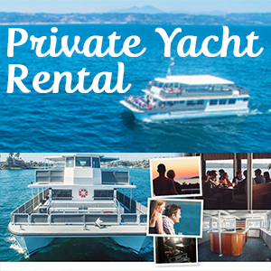Private Boat and Yacht Rental